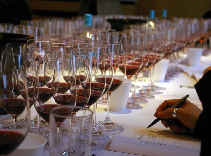 Wine Class for Beginner