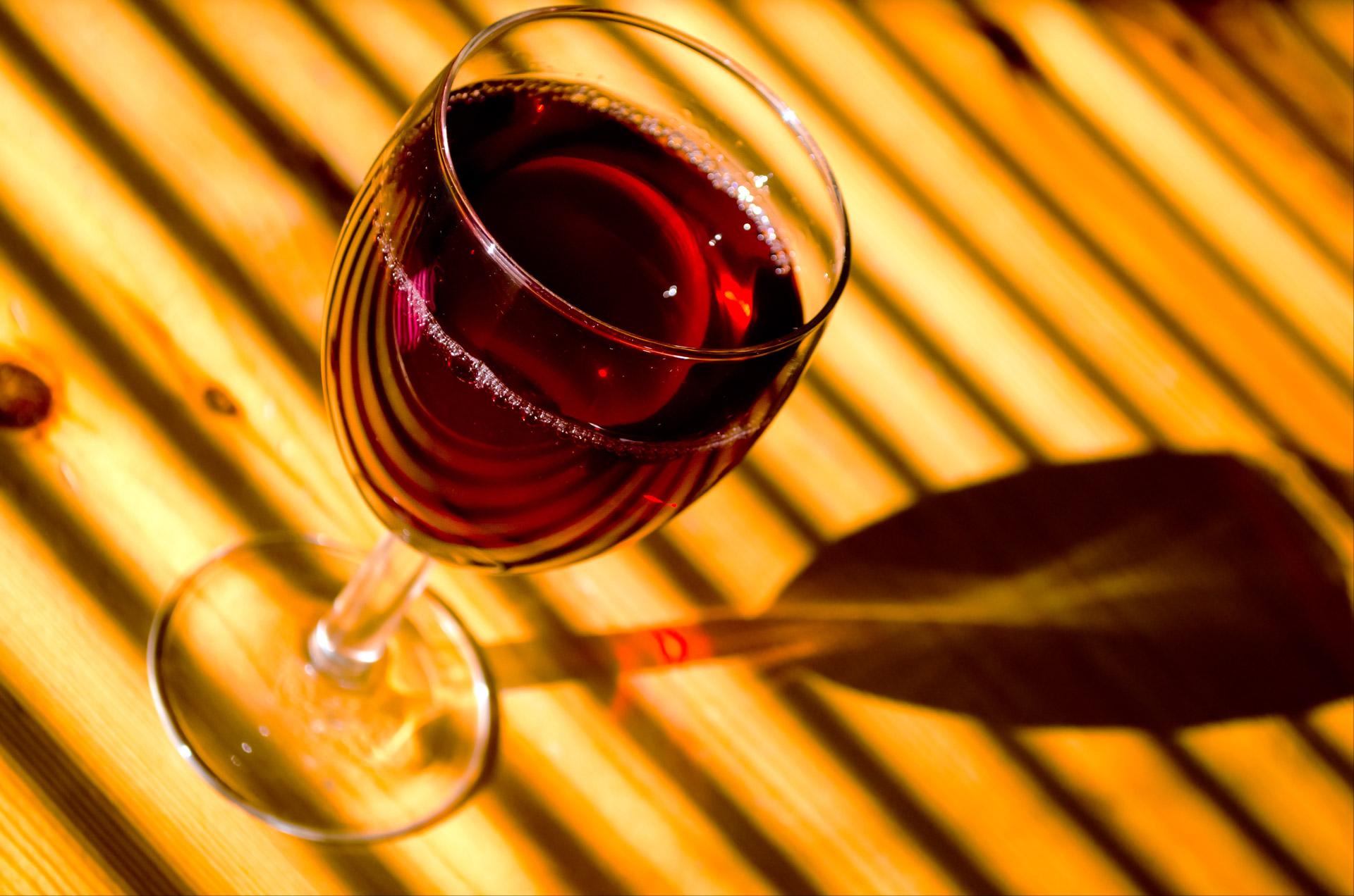 Wine for Beginner Singapore – Wine Class / Course / Event by Taberna Wine Academy